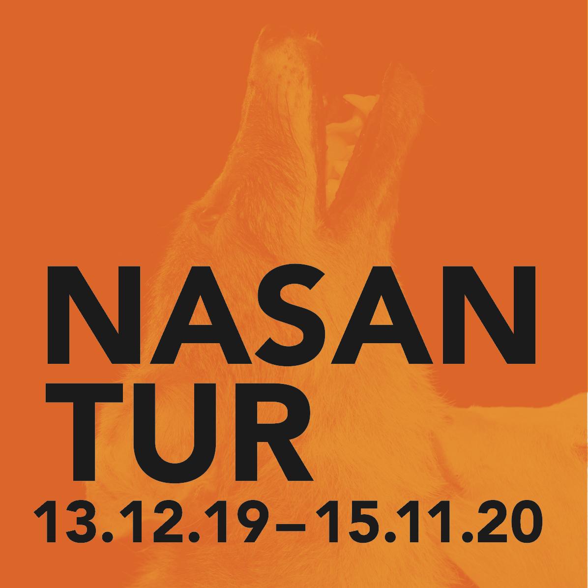 nasan_tur