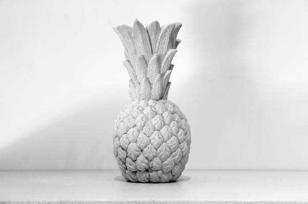 keteleer_andy-wauman_my-personal-favourites-pine-apple