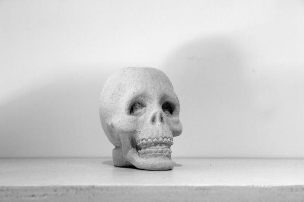 keteleer_andy-wauman_skull